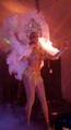 MELLE SAO PLUMES CABARET